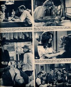 Marqué au fer ( ciné-revue 19-1-67)